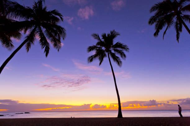 Beach Sunset:スマホ壁紙(壁紙.com)