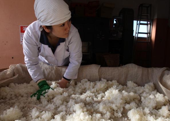 蒸し「Female Sake Brew Master In Himeji」:写真・画像(11)[壁紙.com]