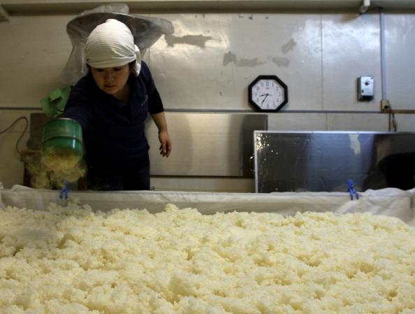 蒸し「Female Sake Brew Master In Himeji」:写真・画像(10)[壁紙.com]