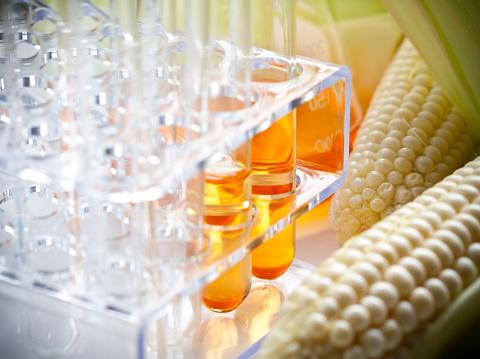 Chemical「Biofuel or Corn Syrup」:スマホ壁紙(6)
