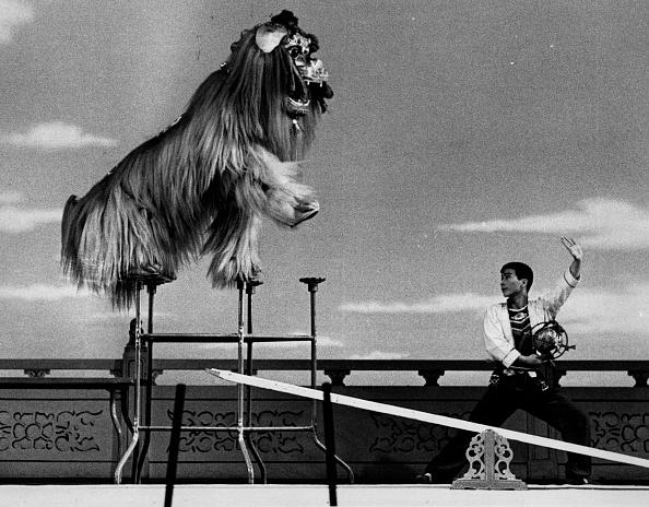 London Coliseum「Chinese Acrobats」:写真・画像(12)[壁紙.com]