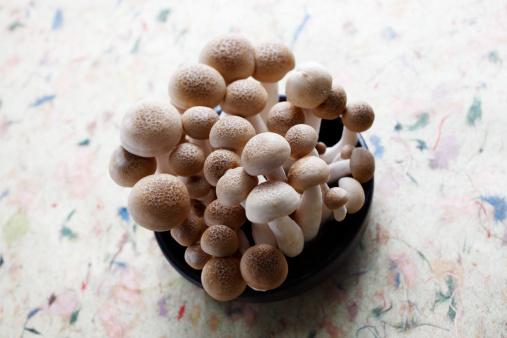 ヒラタケ「Shimeji mushroom,kimchi material」:スマホ壁紙(16)