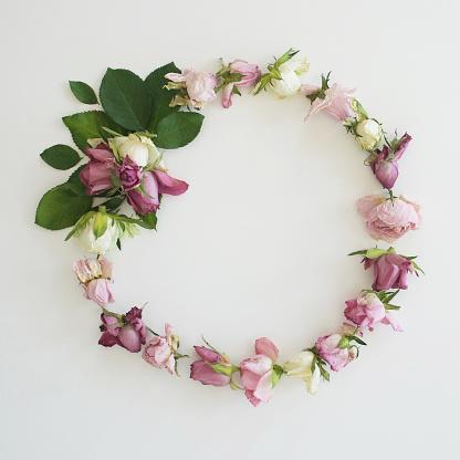 リース「Pink Rose wreath on white background」:スマホ壁紙(13)