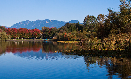 秋「Canada, British Columbia, Vancouver, Mountains and Trout lake in autumn」:スマホ壁紙(12)