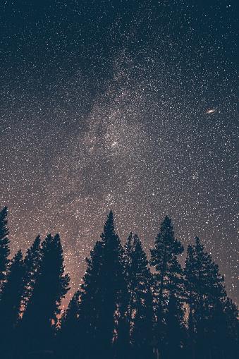 星空「Canada, British Columbia, Chilliwack, starry sky at night, milky way」:スマホ壁紙(4)