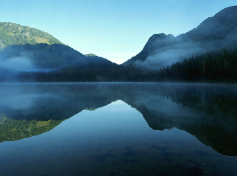 View Into Land「Canada, British Columbia, Whistler, Madely Lake, cover with fog」:スマホ壁紙(6)