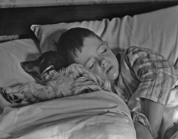 Sleeping「Sleeping With The Dog」:写真・画像(17)[壁紙.com]
