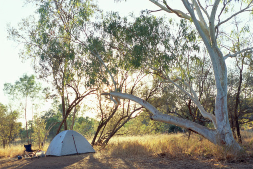 Camping Chair「Tent pitched below tree in outback」:スマホ壁紙(11)