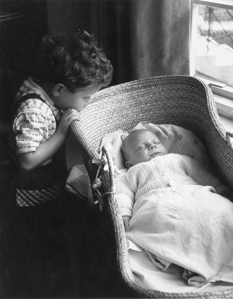Cute「Baby Curiosity」:写真・画像(17)[壁紙.com]