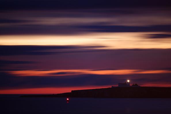Sky「Visitors Enjoy The Wildlife At The Farne Islands」:写真・画像(8)[壁紙.com]