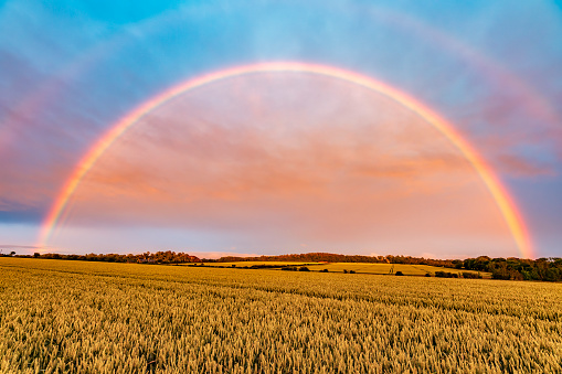 East Lothian「Double rainbow arching over yellow countryside field at dusk」:スマホ壁紙(8)
