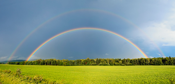 虹「Double rainbow over trees and lush green field」:スマホ壁紙(15)