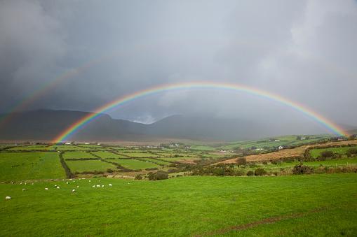 虹「Double rainbow over the lush green farmland with grazing sheep」:スマホ壁紙(15)