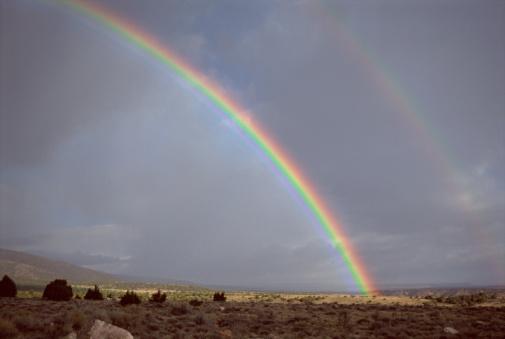 Double Rainbow「Double rainbow」:スマホ壁紙(14)