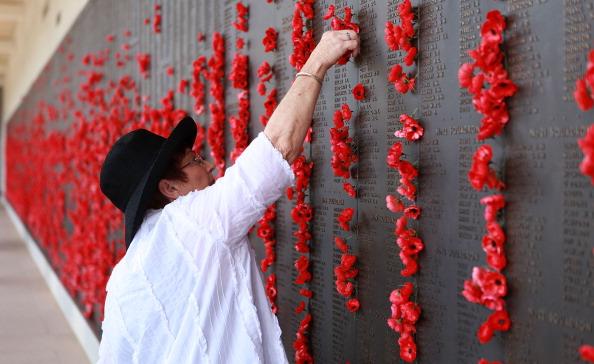Poppy - Plant「Remembrance Day Commemorated In Australia」:写真・画像(18)[壁紙.com]