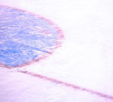 Figure Skating「Ice Hockey Arena」:スマホ壁紙(18)