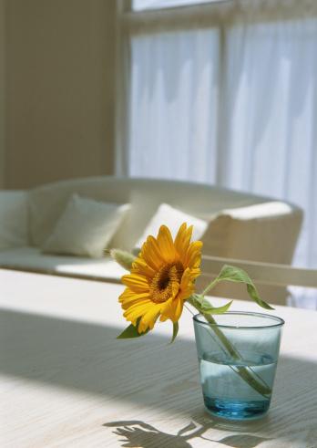 ひまわり「Sunflower on table」:スマホ壁紙(18)