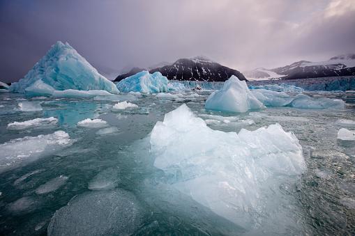 Arctic Ocean「Icebergs Floating Near Face of Sveabreen Glacier in Nordfjorden」:スマホ壁紙(10)