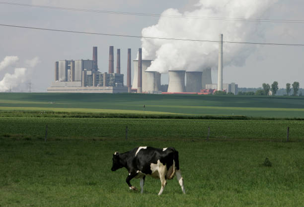 Despite High Emissions, New Coal Power Plants Planned in Germany:ニュース(壁紙.com)