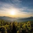 Bavarian Forest壁紙の画像(壁紙.com)