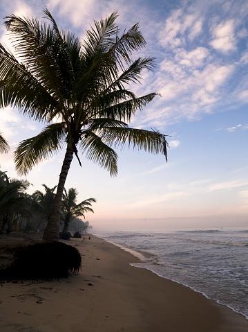 アラビア海「Kerala, Arabian Sea, India」:スマホ壁紙(17)