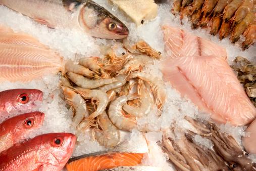 熱帯魚「シーフードの構成」:スマホ壁紙(10)