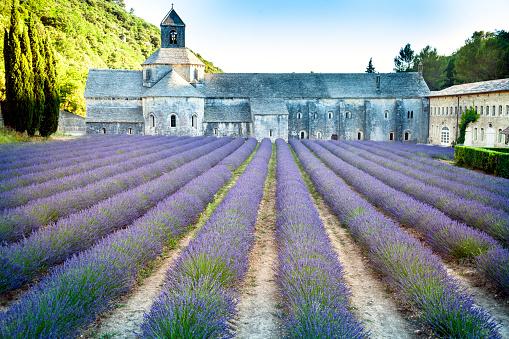 Abbey - Monastery「Senanque Abbey Provence」:スマホ壁紙(9)