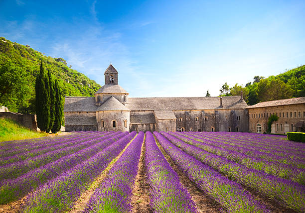 Senanque Abbey (Provence, France):スマホ壁紙(壁紙.com)