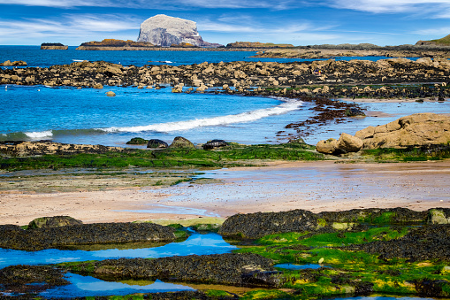 East Lothian「Stunning view on stone with seaweed and Bass Rock, Colony of gannets, North Berwick, Scotland, UK」:スマホ壁紙(13)