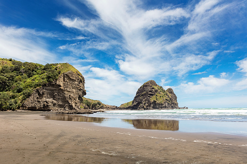 Volcanic Landscape「Lion Rock at Piha Beach Auckland New Zealand」:スマホ壁紙(13)
