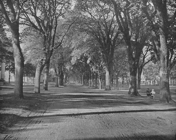 1900-1909「The Elms」:写真・画像(4)[壁紙.com]