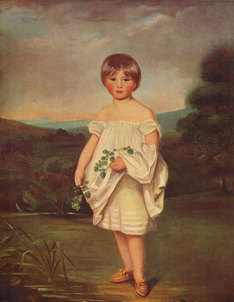 葉・植物「Miss Van Diest」:写真・画像(9)[壁紙.com]