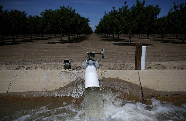 California's Central Valley Heavily Impacted By Severe Drought:ニュース(壁紙.com)