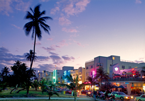 Fan Palm Tree「Miami, Miami Beach, Ocean Drive at twilight」:スマホ壁紙(12)