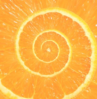 Orange - Fruit「Droste orange」:スマホ壁紙(10)