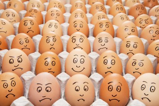 豊富「one happy egg amongst sad eggs」:スマホ壁紙(16)