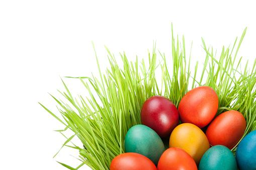 イースター「イースター卵ます。」:スマホ壁紙(19)