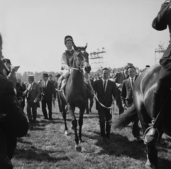 Horse Racing「Nijinsky at Epsom」:写真・画像(6)[壁紙.com]