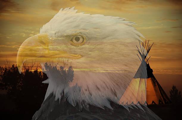 Eagle and teepee:スマホ壁紙(壁紙.com)