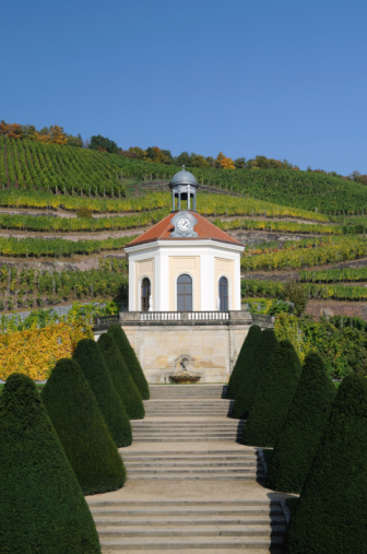 Boulevard「Belvedere of Vineyards in Fall」:スマホ壁紙(14)