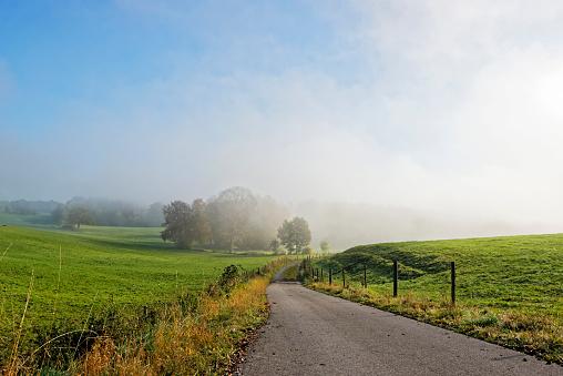 Country Road「Germany, Bavaria, Upper Bavaria, landscape near Icking at morning mist」:スマホ壁紙(16)
