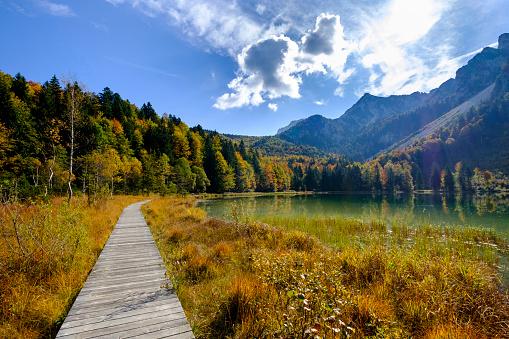 Footbridge「Germany, Bavaria, Upper Bavaria, Chiemgau, Inzell, Frillensee in autumn」:スマホ壁紙(11)