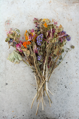 Dried Plant「Germany, Bavaria, A bunch of withered field flowers and pink roses on a grey slab」:スマホ壁紙(8)