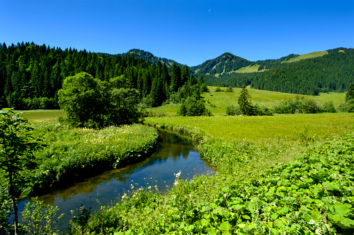 European Alps「Germany, Bavaria, Rote Valepp in between Valepp mountain pasture near Spitzingsee」:スマホ壁紙(6)