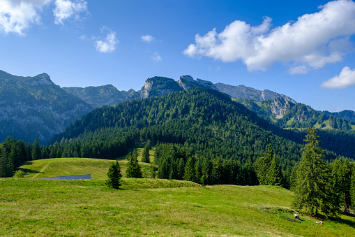 Bavarian Prealps「Germany, Bavaria, Arzbach, Scenic view of forested Benediktenwand ridge」:スマホ壁紙(10)