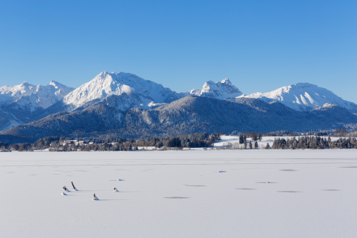 Snowfield「Germany, Bavaria, View of Hopfensee Lake and Tannheim mountains」:スマホ壁紙(2)