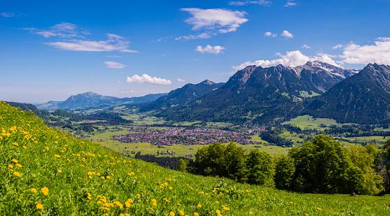 たんぽぽ「Germany, Bavaria, Oberallgaeu, Oberstdorf」:スマホ壁紙(8)
