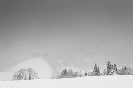 雪の結晶「Germany, Bavaria, Berchtesgadener Land, winter landscape」:スマホ壁紙(5)