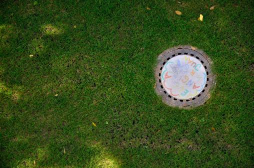 草地「Germany, Bavaria, Munich, Painted manhole cover on meadow」:スマホ壁紙(15)