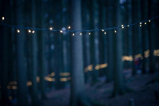 Bavarian Forest「Germany, Bavaria, Sankt Englmar, Fairy lights in forest」:スマホ壁紙(4)
